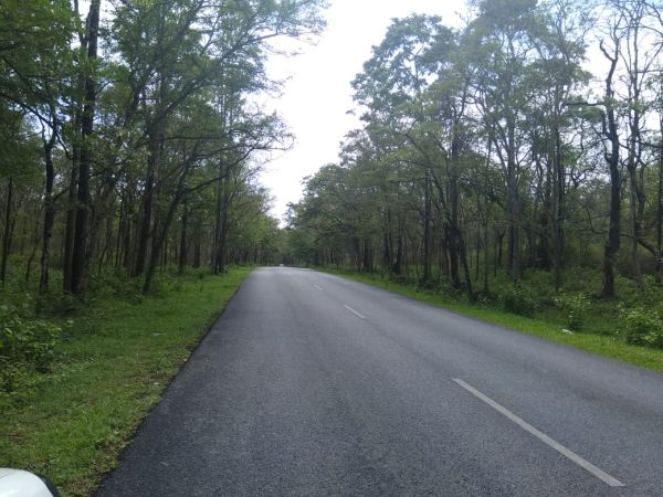 Coorg Packages From Mysore For 2 Days Car Package